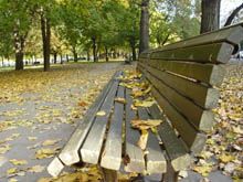 photo_autumn_bench.preview